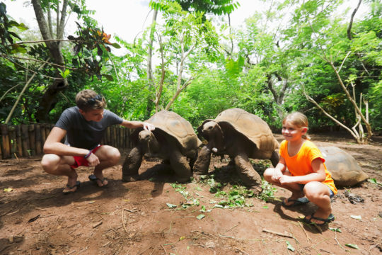 Enfants tortues madagascar office national du tourisme de madagascar - Office national du tourisme madagascar ...