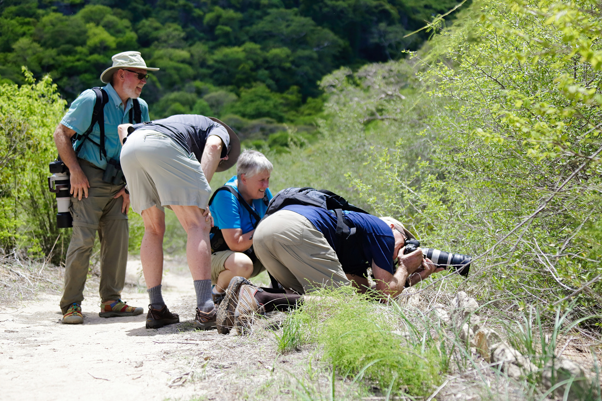 groupe touriste photographie madagascar nature