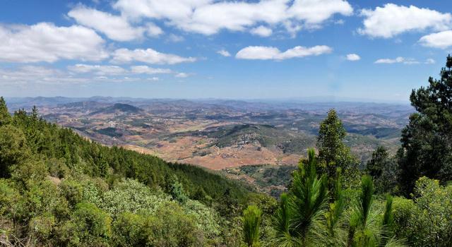 Madagascar c l bre son patrimoine forestier office national du tourisme de madagascar - Office national du tourisme madagascar ...